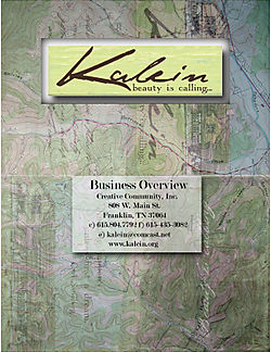 Kalein Business Overview Title Page